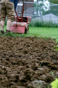 Cultivate-  to till and prepare (land or soil) for the growth of crops: 2. to plant, tend, harvest, or improve (plants) by labour and skill;  to prepare or prepare and use for the raising of crops; also : to loosen or break up the soil about